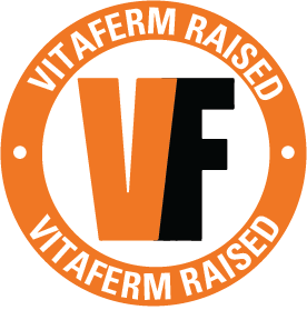 VF_Raised_Icon