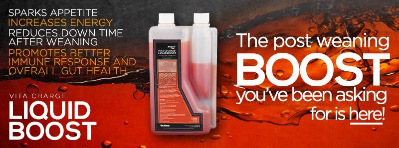 VitaCharge Liquid Boost