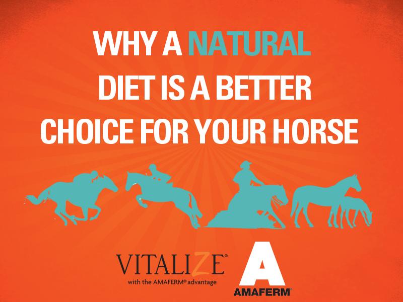 Natural Horse Diet