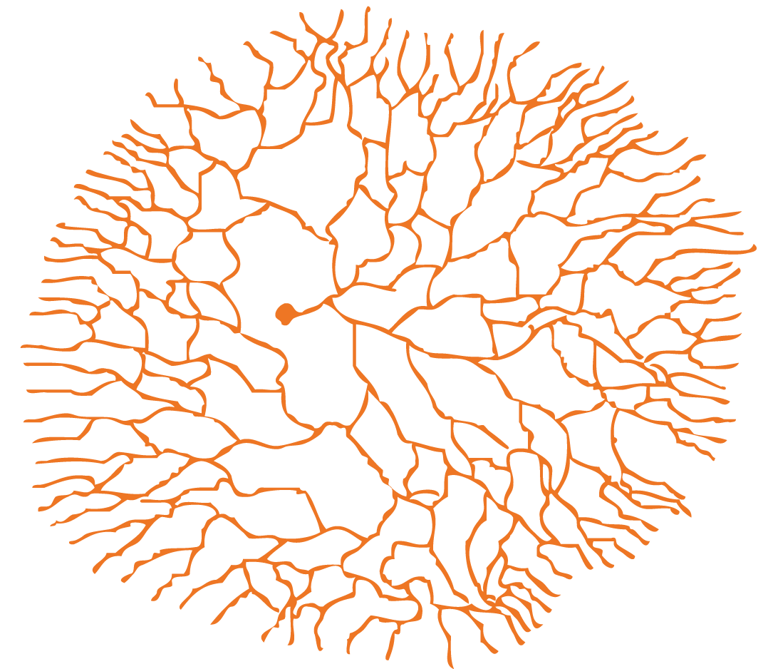 Fungal Branch