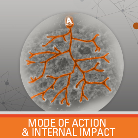 Mode of Action and Internal Impact