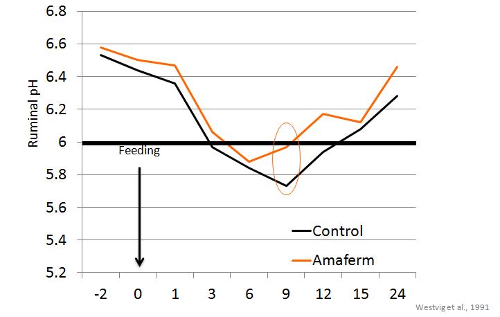 pH Graph