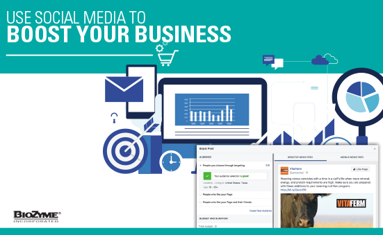 Use Social Media to Boost Your Business