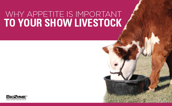 Why Appetite Is Important To Your Livestock