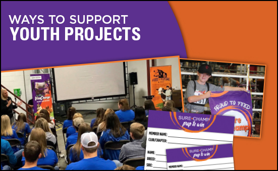 Ways to Support Youth Projects
