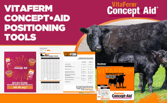 VitaFerm Concept•Aid Positioning Tools
