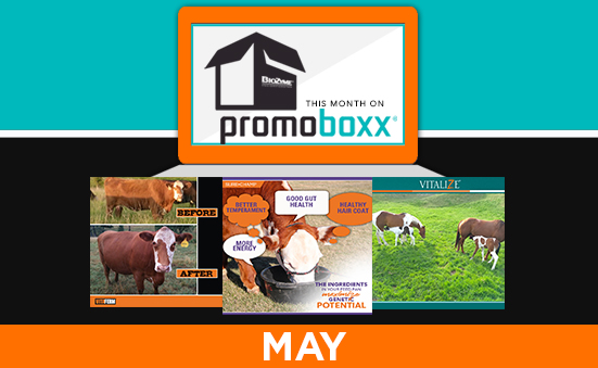MAY PROMOBOXX CAMPAIGNS