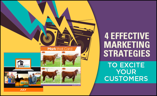 4 Effective Marketing Strategies to Excite your Customers