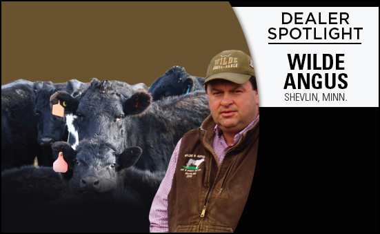 Dealer Spotlight: Wilde Angus