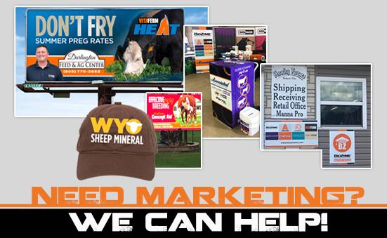 Do You Need Marketing Help?