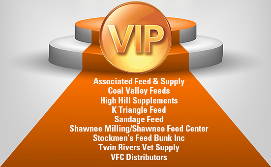 Congratulations To Our VIP Dealers!