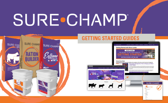 Show Your Customers Why They Need Sure Champ Every. Day