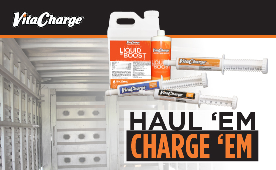 Haul 'Em and Charge 'Em with Vita Charge®!