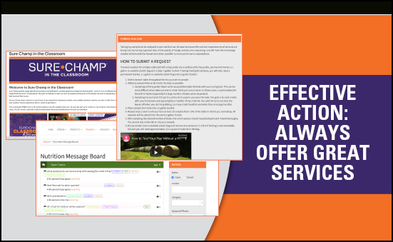 Effective Action: Always Offer Great Services