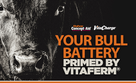 Get Your Bull Battery Primed and Ready to Go with VitaFerm