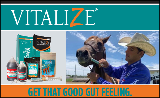 Get That Good Gut Feeling With Vitalize