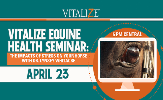 Don't Miss Out On Our Vitalize Equine Health Seminar!
