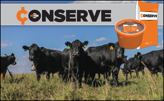 VitaFerm Conserve: Save Many with Several Choices