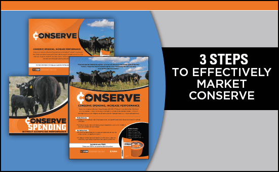 3 Steps to Effectively Market Conserve