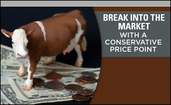 Break Into the Market with a Conservative Price Point