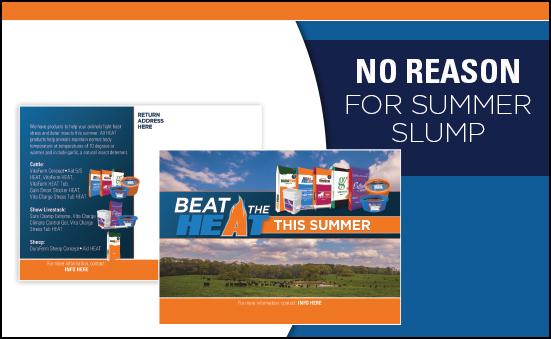 Effective Action: No Reason for Summer Slump