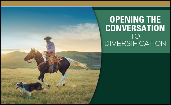 Opening the Conversation to Diversification