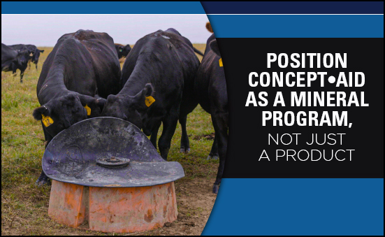 Position Concept•Aid as a Mineral Program Not Just a Product