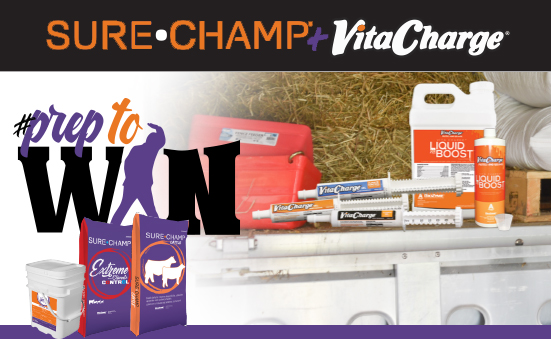 Products that Help #PreptoWin in the Ring and in Life