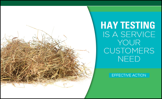 Hay Testing is a Service Your Customers Need