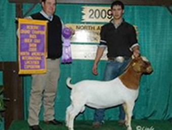 Kirk Perry, K&D Boer Goats | Texas