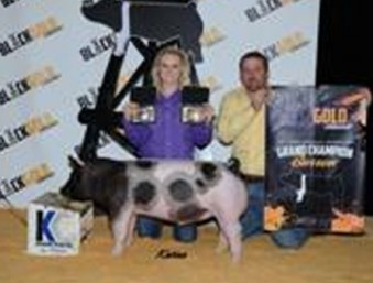 2014 Black and Gold Classic Grand Champion Market Barrow Day 1 Rilee Dunn | Texas