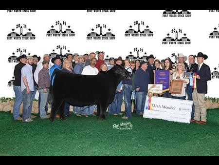 2014-ftworth_grandchampionangus_caliwest