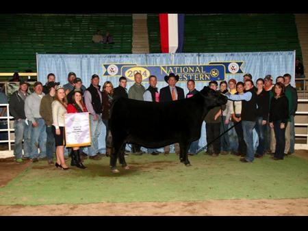 2014-nwss_rgcangusfemale_carterward