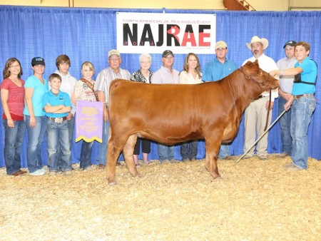 Cooper Rogers Reserve Champion owned heifer North American Junior Red Angus[4]