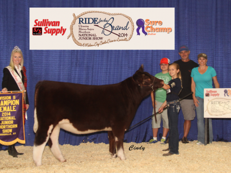 Division 2 Champion Shorthorn Heifer_ Madison McCormick