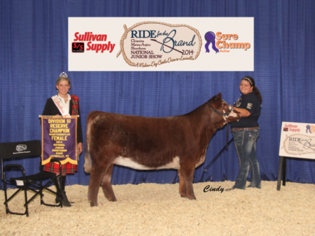 Reserve Champion Division 3 Shorthorn Plus_ Taylor Heim