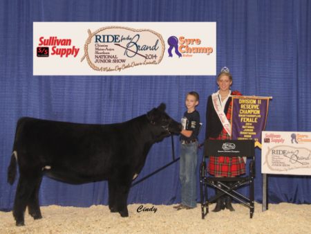 Division 2 Reserve Champion Shorthorn Plus_Brayden Freeman
