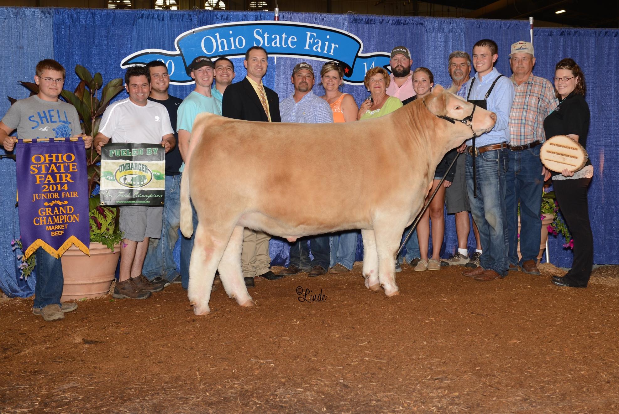 Grand Steer OH 14′