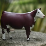 Toy Hereford cow