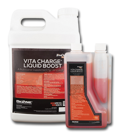 Vita Charge Liquid Boost Group
