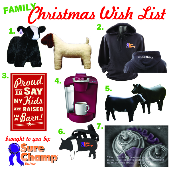 Sure Champ Family Christmas Wish List