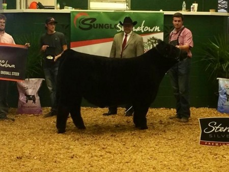 Overall Steer Sunglo