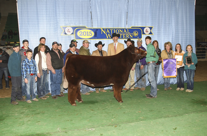 NWSS Grand Champion Steer