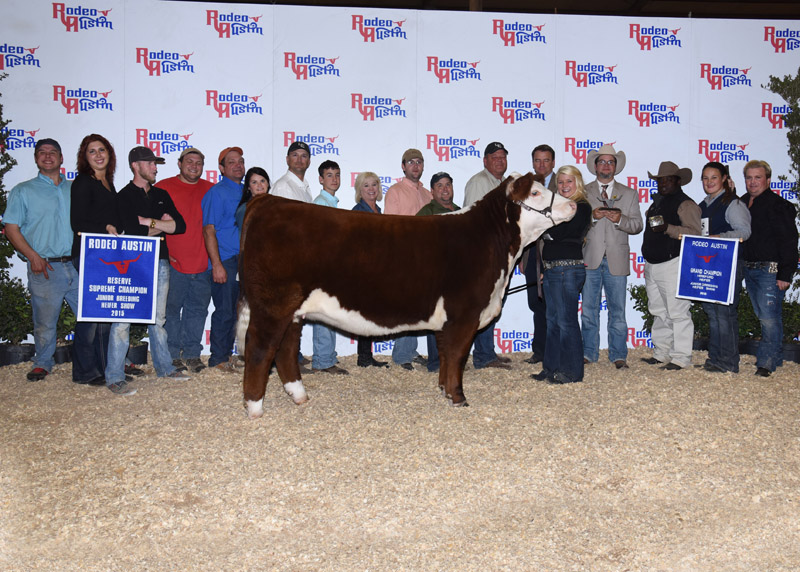 Kay Ellis Reserve Supreme Champion Junior Breeding Heifer – Star of Texas Livestock Show