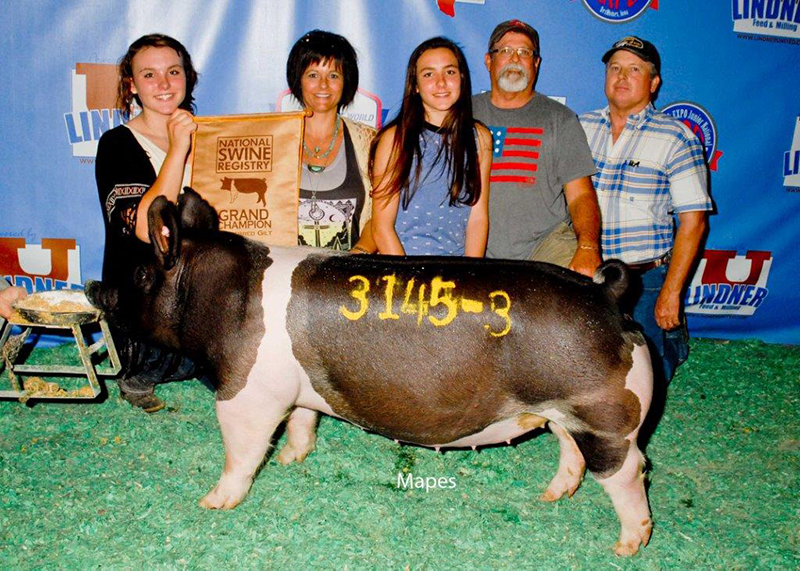 Shelby Weinrich Grand Champion Open Crossbred Gilt World Pork Expo