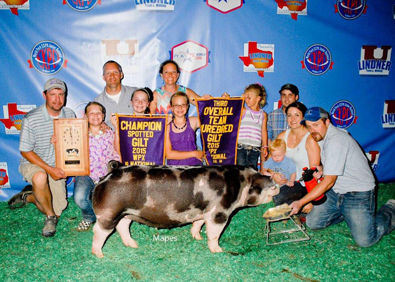 3rd Overall CPS Gilt & Champion Spot World Pork Expo Mike Jackson Family