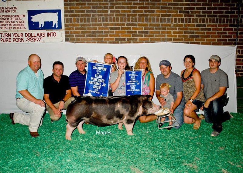 4th Overall Gilt & Reserve Spot  2015 Team Purebred Jr Show Lucy Jackson