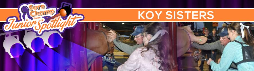 surechampspot-koy-header-jan2016