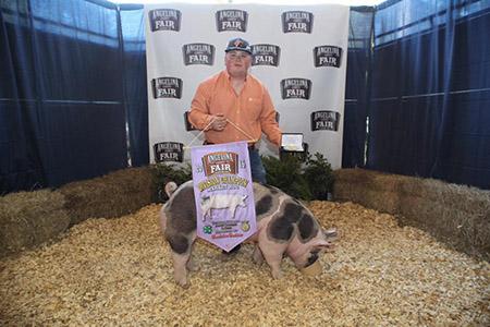 2016-ACYF-Grand-Champion-Market-Hog