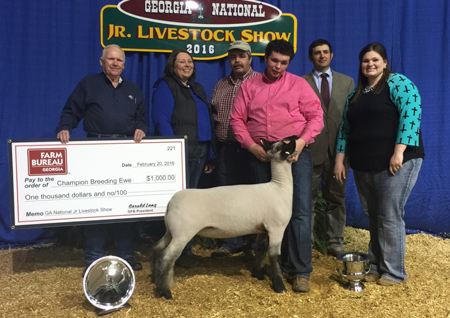 Supreme Grand Champion Breeding Ewe Georgia National